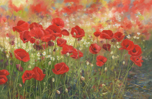 Poppies - Product Image