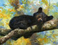 Sleepy Bear - Product Image